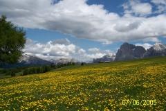Südtirol Juni 2005 030
